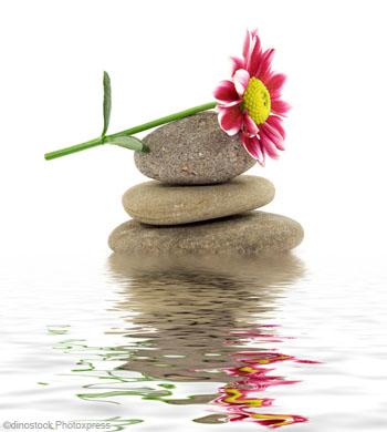 gratitude et méditation - marguerite zen